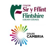 Flintshire Multi Me